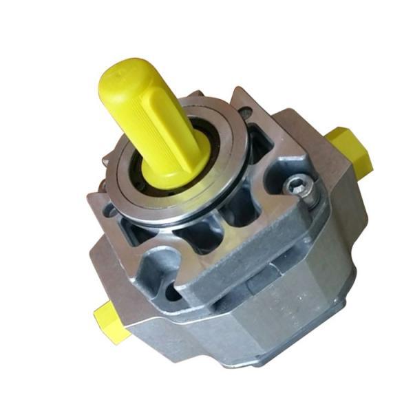 SUMITOMO CQTM43-20F-3.7-1-T-S1307-D Double Gear Pump #2 image